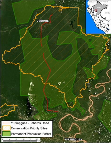 The Yurimaguas-Jeberos Road runs through production forest, in lighter green, and a conservation priority site, outlined in yellow.