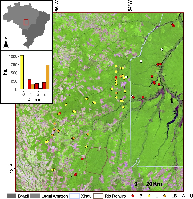Map of degraded and intact forest stands in the Brazilian state of Mato Grosso, where researchers from University of Maryland and NASA recorded forest degradation from fire and logging via ground-based, satellite and LiDAR data. Forest appears green, deforested areas appear pink, and circles indicate the center of forest stands with LiDAR coverage (see key for color code; U—undisturbed; L—logged; LB—logged and burned; B—burned). Figure from Rappaport et al. 2018.
