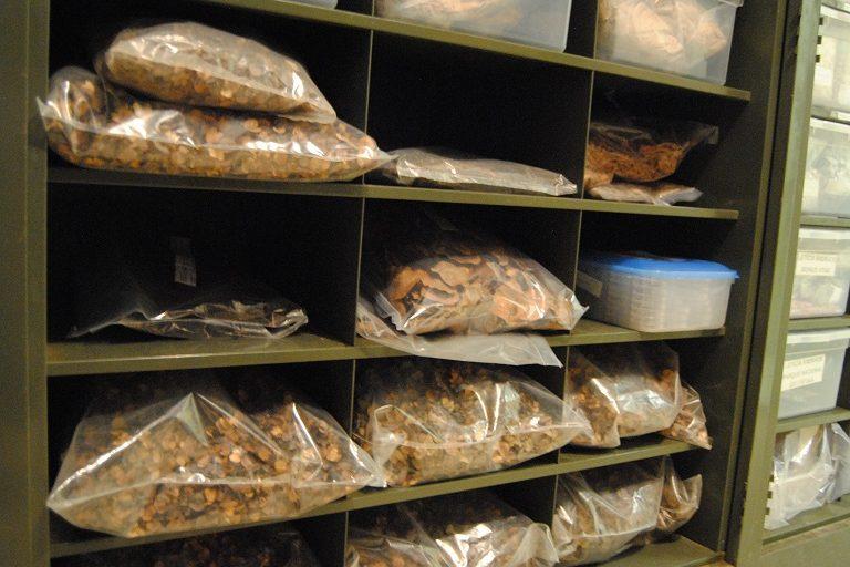 Stored seeds in the seed bank. Photo by Ignacio Amigo/Mongabay