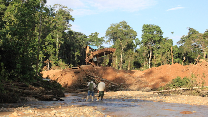 On the border between Bahuaja-Sonene National Park and its buffer zone, illegal miners have removed land and diverted the natural course of the Malinowski River. The remaining trees are part of the park. Photo by Vanessa Romo.