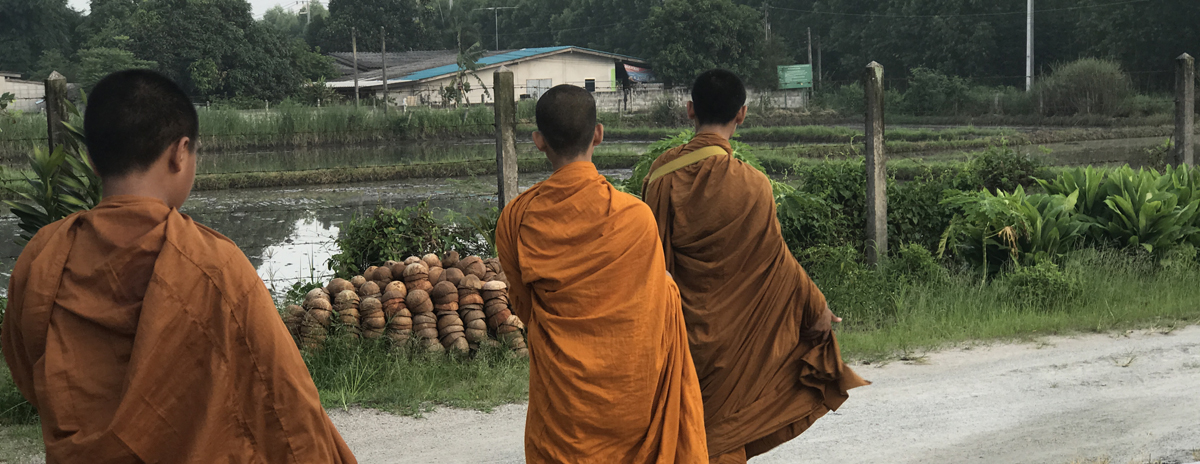 Ecology monks in Thailand seek to end environmental suffering