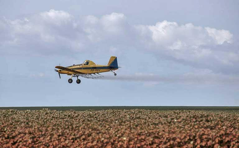 Brazil's pesticide poisoning problem poses global dilemma