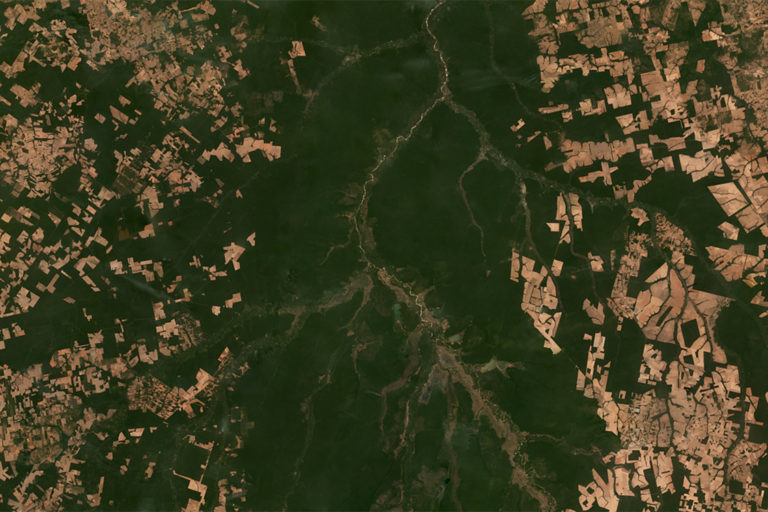 Planet Labs satellite image showing deforestation around the Xingu Basin in Brazil in June 2018.
