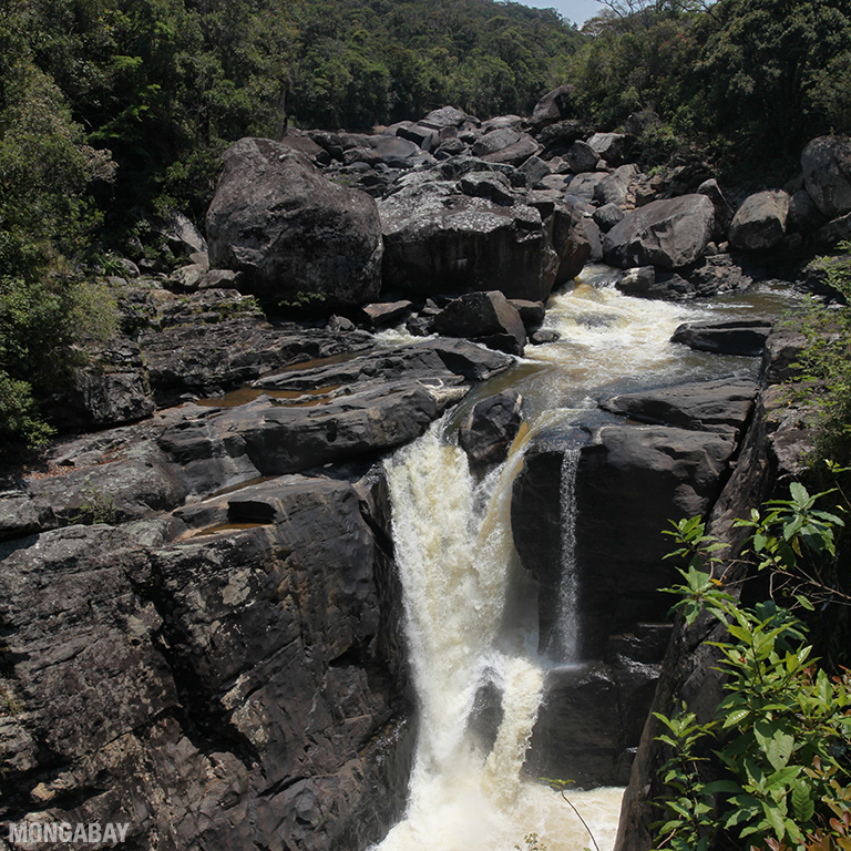 Andriamamovoka falls on the Namorona River in Ranomafana. Photo by Rhett A. Butler