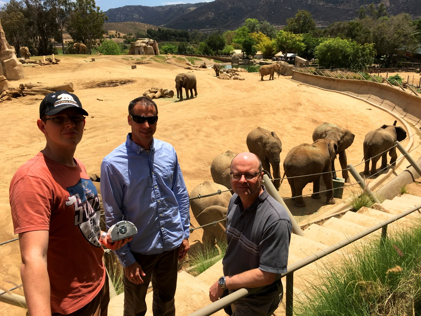 The WIPER team in at the San Diego Zoo: (L-R) Gyorgy Kalmar, George Wittemyer, Ákos Lédeczi, with test subjects behind them.