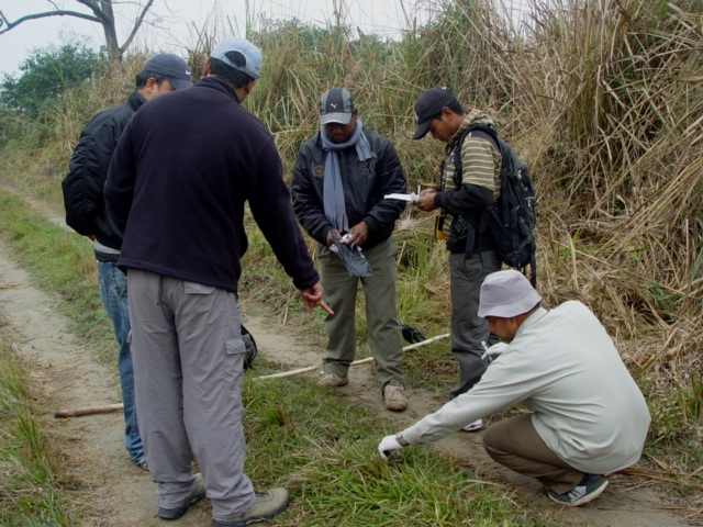 Field biologists collect carnivore fecal samples in search of tiger DNA. Scientists used the samples with viable DNA to create the tiger genetic reference database.