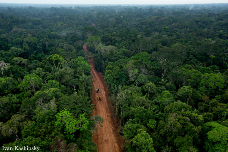A secret oil access road built within Block 31 of Yasuni National Park, one of the most biologically diverse places on Earth. Photo © Ivan Kashinsky.