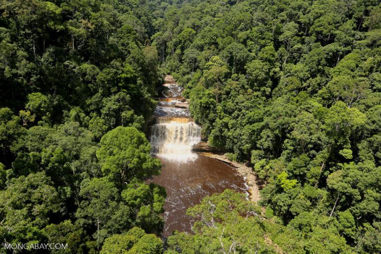 Maliau Falls in Sabah, Malaysia. Photo by Rhett A. Butler