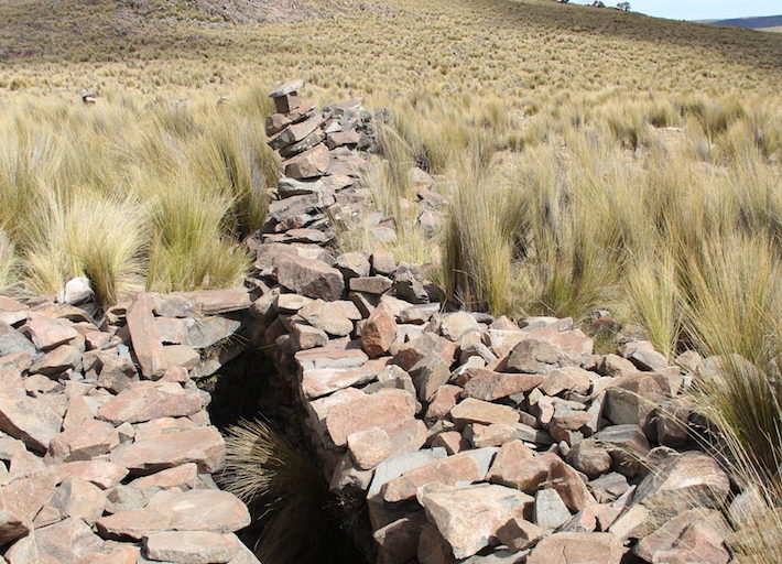 In the past, inhabitants of the area created holes for the vicuñas to fall into so that they could shear their fur and eat their meat. The remains of several of these holes still exist in the reserve. Photo by Vanessa Romo for Mongabay Latam.
