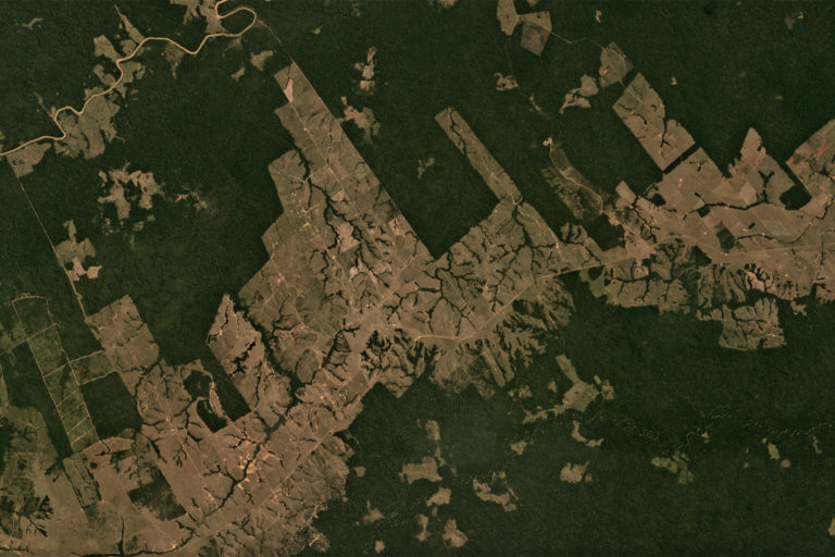 Planet satellite image showing a mosaic of deforestation and rainforest in São Judas Tadeu, Xapuri in the state of Acre, Brazil in August 2018. Courtesy of Planet.