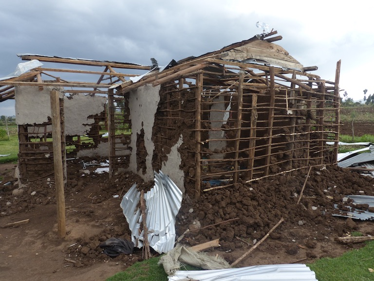 An Ogiek family's house inside the Mau Forest Complex. Police officers and civilians allegedly destroyed it during an eviction of Ogiek from the forest. Image courtesy of the Ogiek Peoples' Development Program.