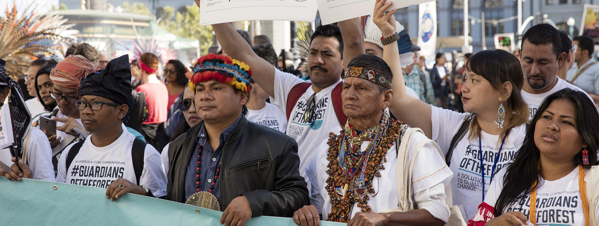 Guardians of the forest:' Indigenous peoples come together to assert