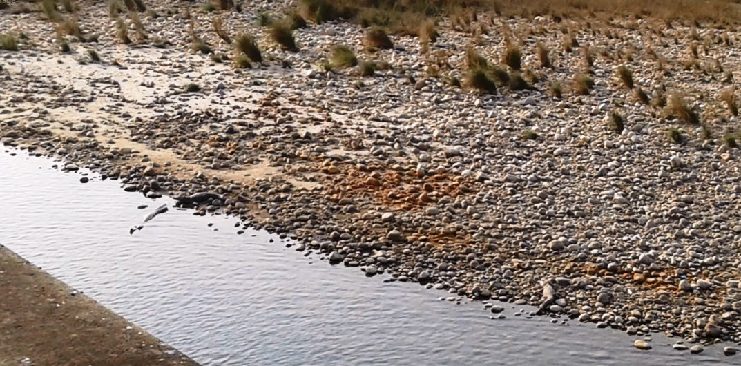 The drone did not bother these gharials basking on the rocky banks of a narrow section of the Babai River in Nepal.