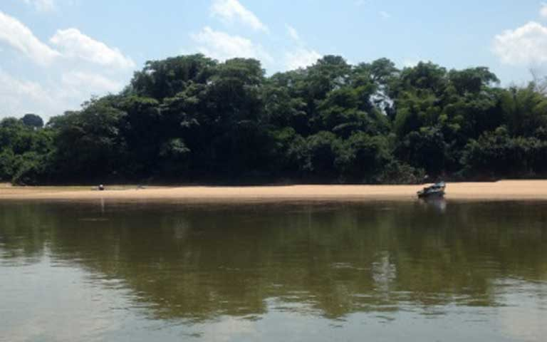 Brazil scraps 11 new Amazon protected areas covering 2,316