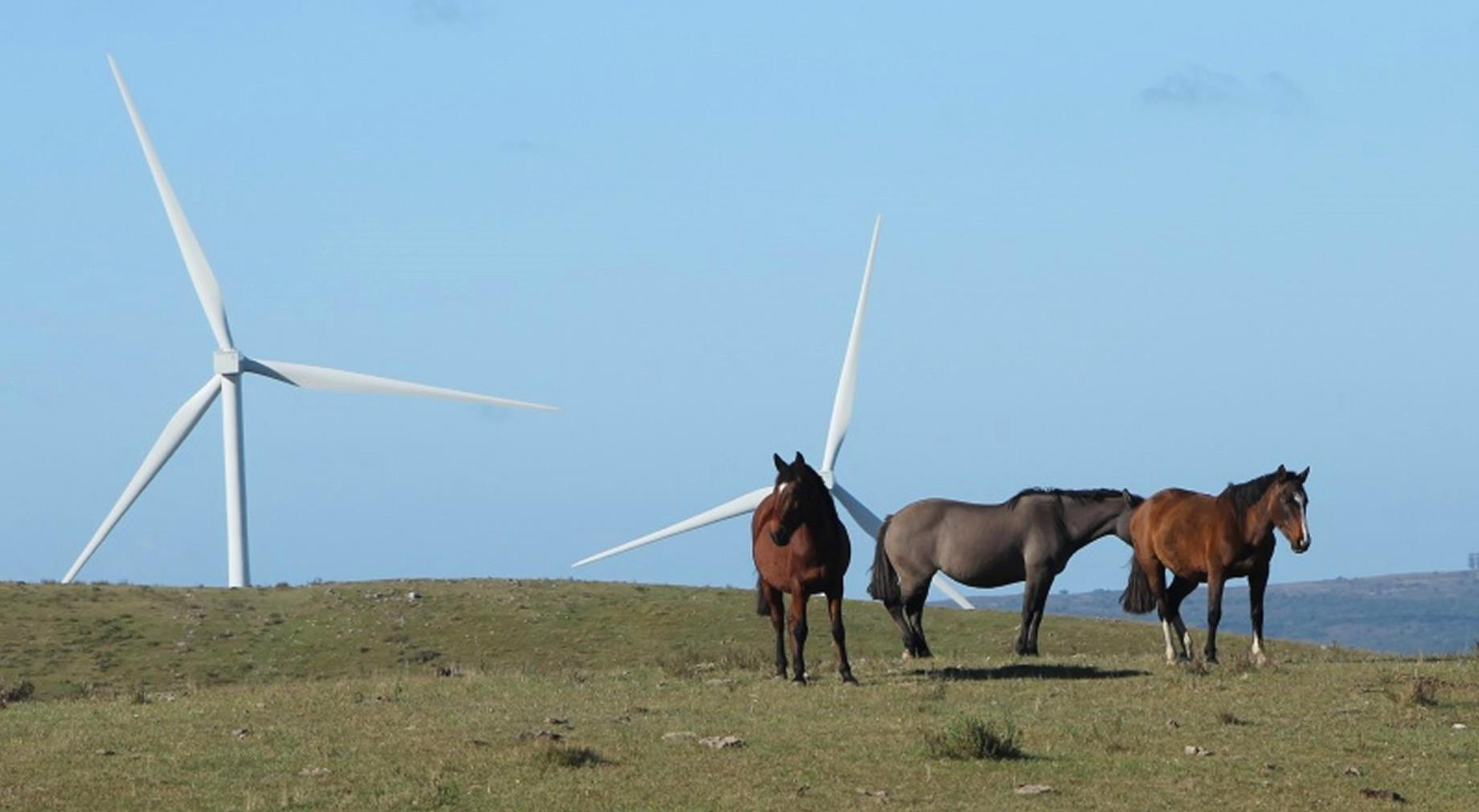 Wind turbines over an Uruguayan landscape.