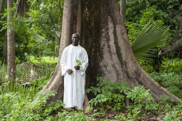 Bassirou Sambou, who heads the biodiversity monitoring section of Kawawana, stands in the ancient woodland surrounding his home. Image by Jennifer O'Mahony for Mongabay.