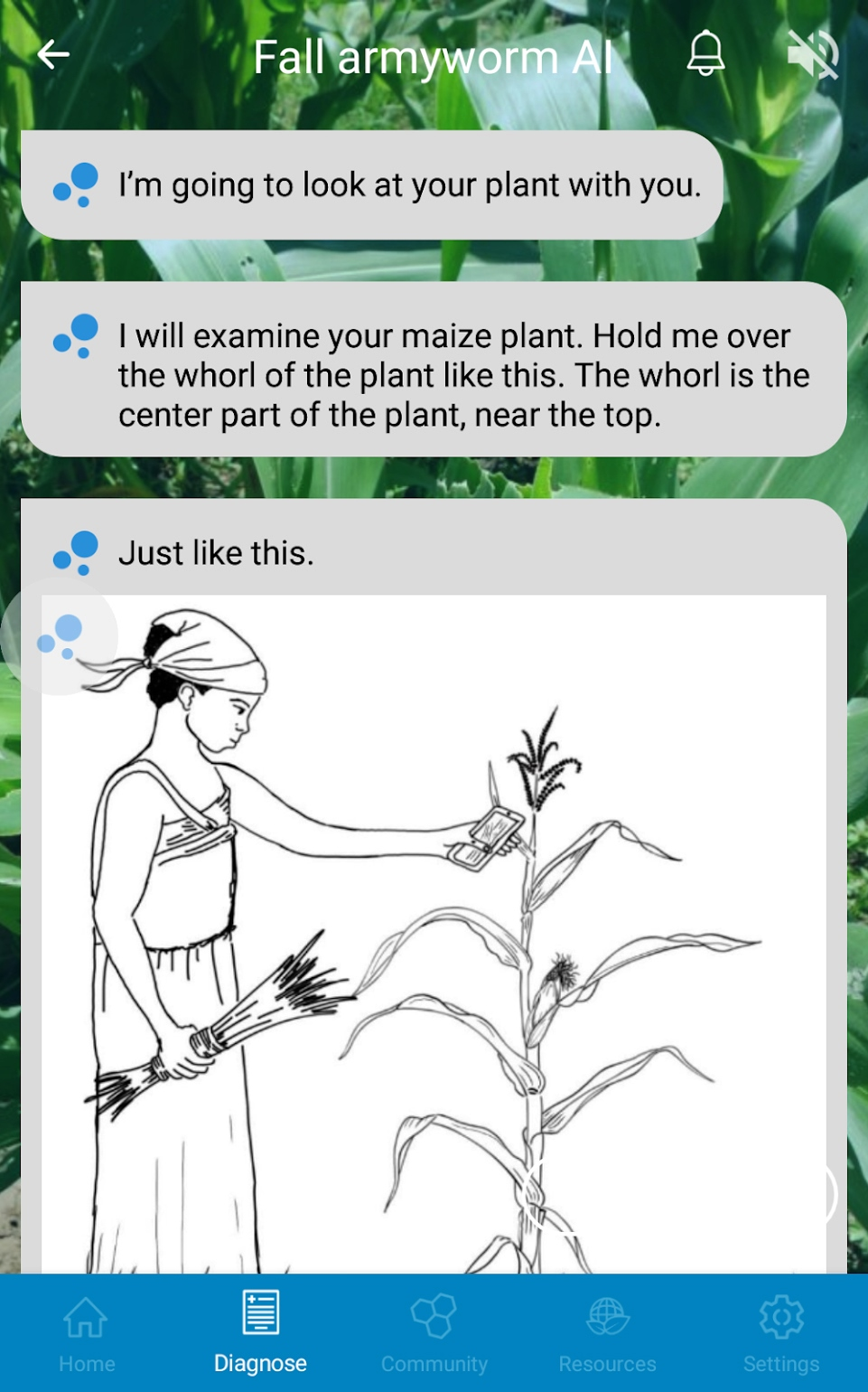 Machine-learning app to fight invasive crop pest in Africa