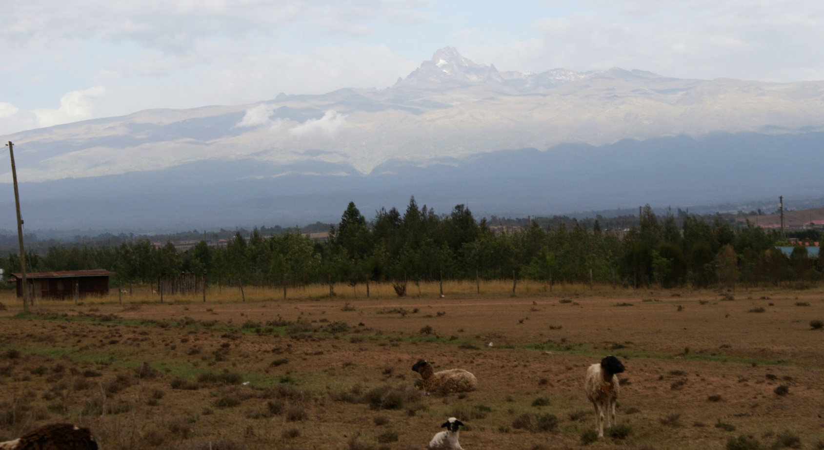 A wide angle view of the leeward side of the Mt. Kenya forest ecosystem. Fire outbreaks on this side of the mountain are common due to prolonged dry spells.