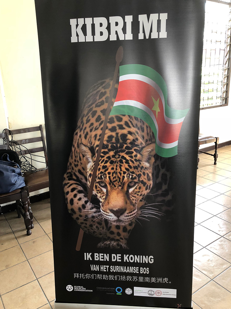 Conference poster. 'Kibri mi' means 'Save me' in Sranan Tongo, one of Suriname's two national languages. 'Ik ben de koning' means 'I am the king!' in Dutch, Suriname's other national language.