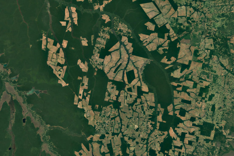 Satellite image from Google Earth showing deforestation near Tanguro, Brazil.
