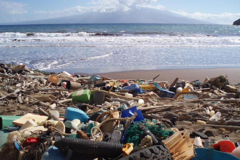 Litter such as plastic detergent bottles, crates, buoys, combs, and water bottles in Kanapou Bay, on the Island of Kaho'olawe in Hawaii. Courtesy of NOAA.