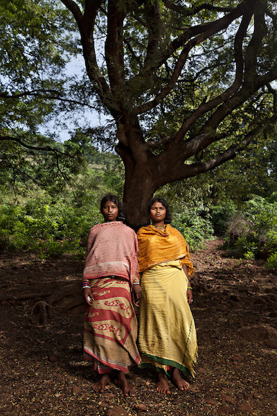 Dongria Kondh women stand under a tree in Hundijali village in the Niyamgiri hill range. Image by Indrajeet Rajkhowa.