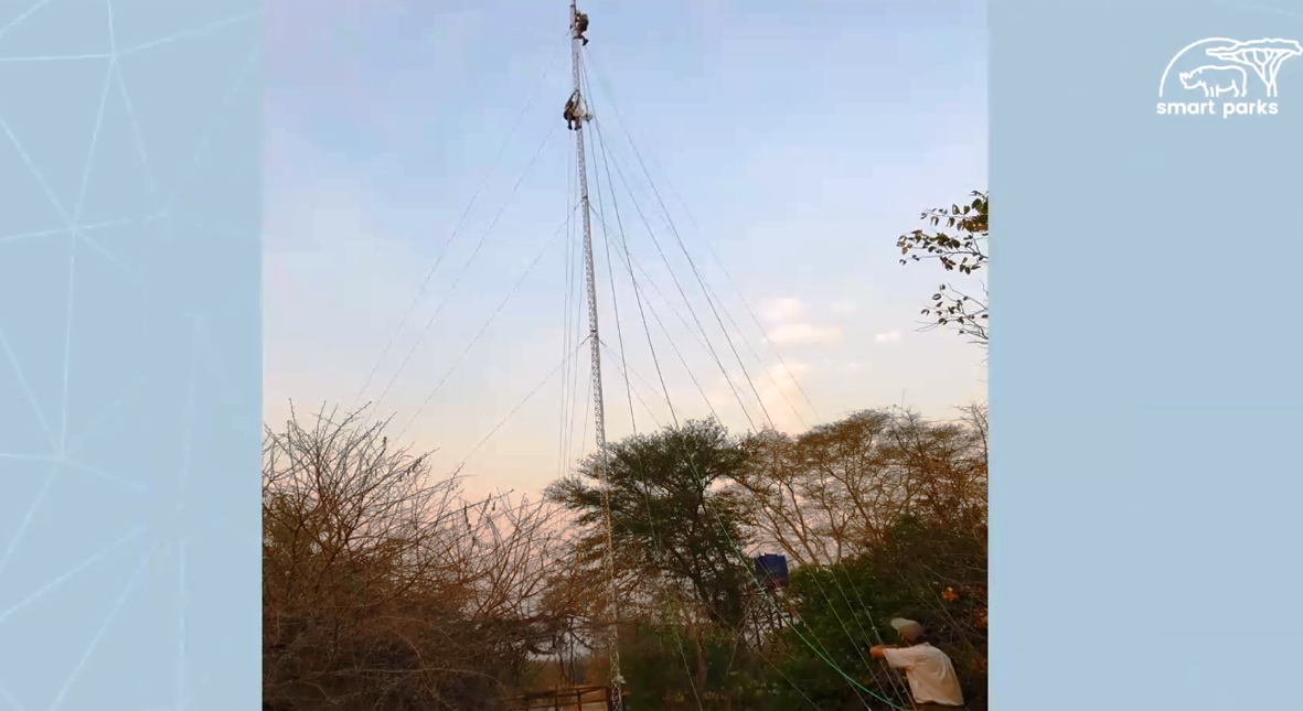 SmartParks team setting up a long-range (LoRa) radio network for a reserve.