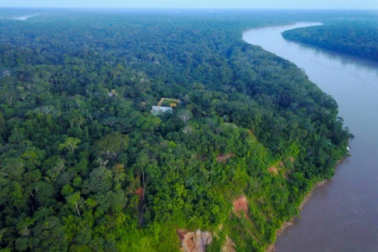 Drone technology allows land managers to monitor their forest concessions, including the Los Amigos Conservation Concession, from above on a regular basis.