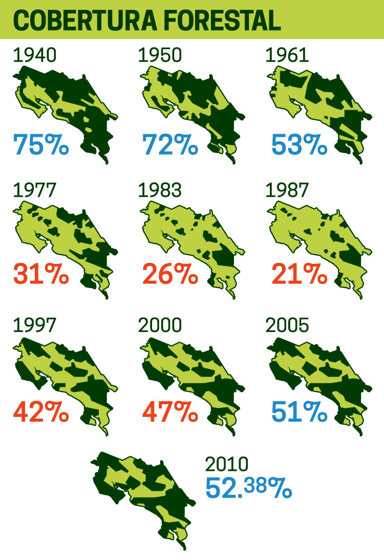 Changes in forest cover. Image by Rodrigo Ruiz