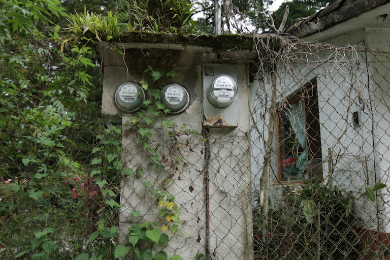 Electric meters belonging to Mexico's Federal Electricity Commission overgrown with vines in Cuetzalan. Image by Ethan Bien for Mongabay.