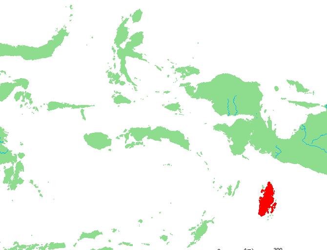 In eastern Indonesia, a bird-trafficking hotspot flies under