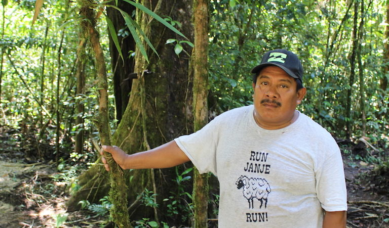 Valentin Suchite patrols the forest searching for signs of deforestation. Image by Anna-Catherine Brigida for Mongabay.