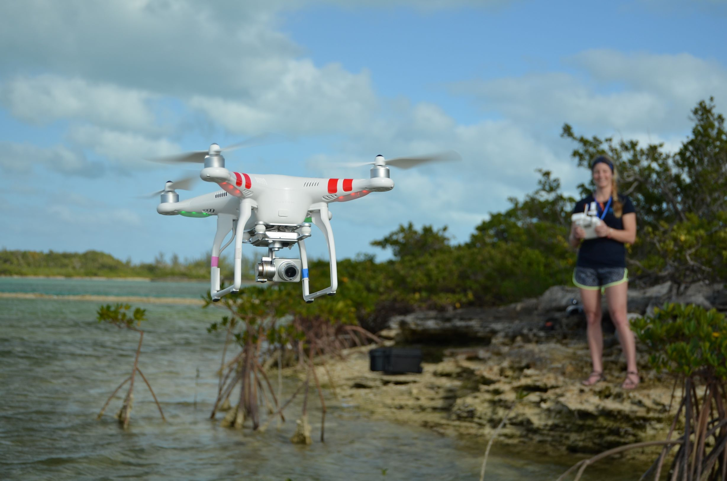 Study lead author Enie Hensel flies a small commercial drone over the shallow waters of The Bahamas to test its utility in surveying and monitoring large marine animals. The researchers conducted aerial surveys and analyzed drone video footage to record the numbers and species of animals spotted.