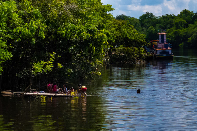 Purus-Madeira: Amazon parks and extraordinary biodiversity at risk now