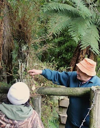Tahae Doherty, chair of the Tūhoe Tuawhenua Trust and a forest expert, shares knowledge with a young person as part of the Te Whare o Rehua forest academy program. Image courtesy of Tūhoe Tuawhenua Trust.