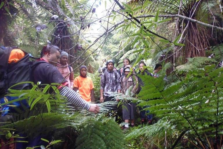 Puke Tīmoti helps local rangatahi (young people) make connections between cultural knowledge and science through the Te Whare o Rehua forest academy program. Image courtesy of Tūhoe Tuawhenua Trust.