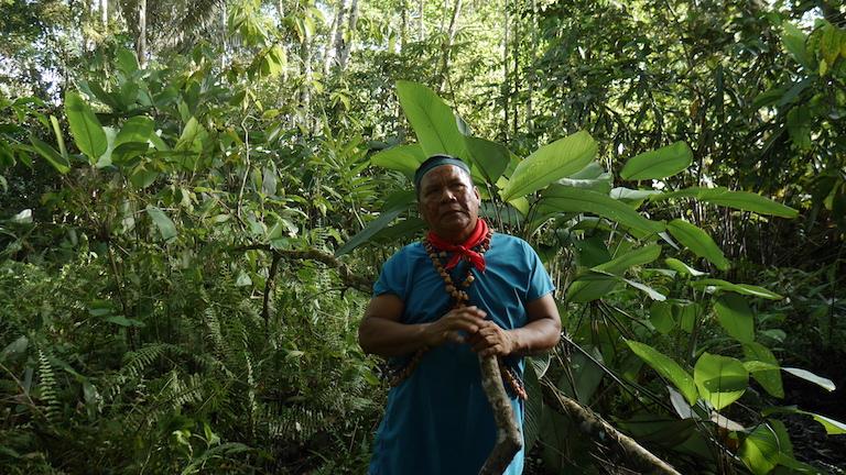 Emergildo Criollo, an indigenous Kofan, digs up crude oil hidden from view in a rainforest swamp near Lago Agrio, Ecuador. Image by Dan Collyns for Mongabay.