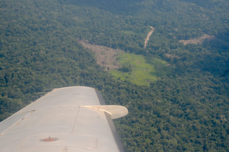 Airplanes provide a bird's eye view of the deforestation. Image by Yvette Sierra Praeli.