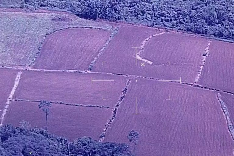 A section of land that was once part of the Amazon being turned into farmland. Image courtesy of the Center for Amazonian and National Vigilance (CEVAN).