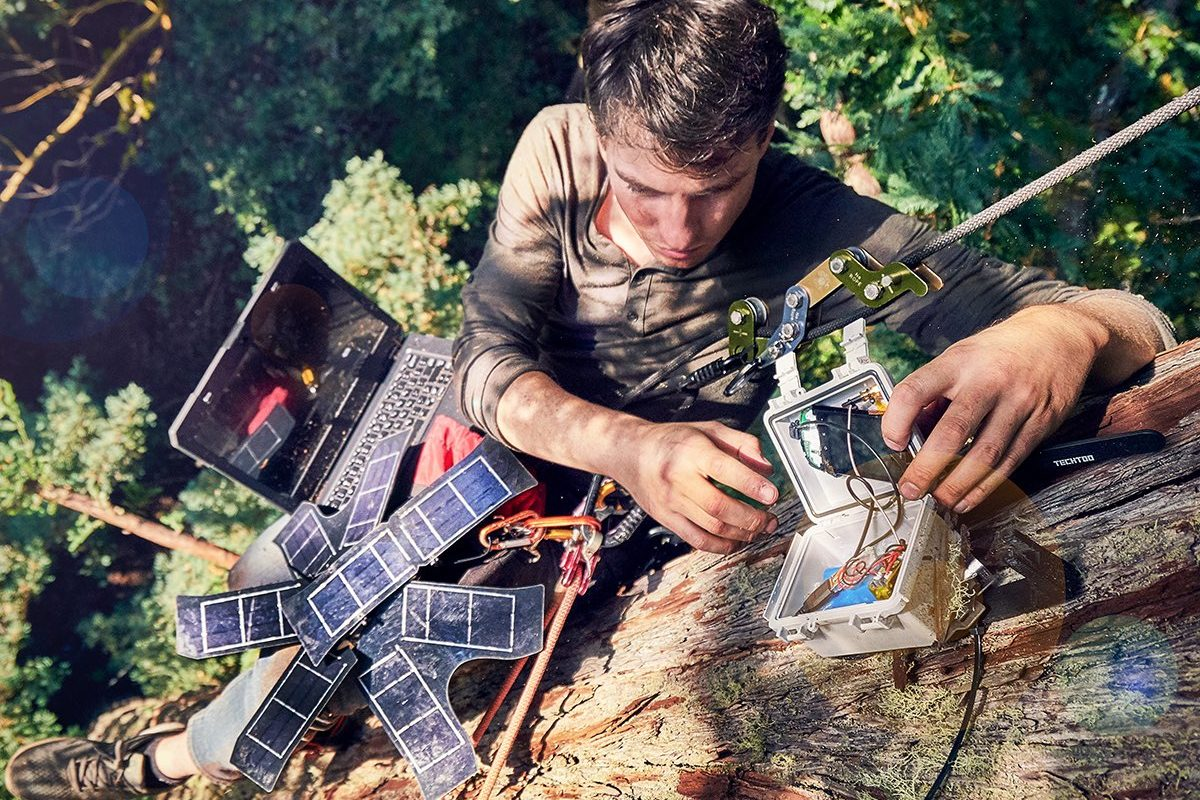 Topher White of Rainforest Connection installing a bioacoustic device in the forest canopy. Image by Ben Von Wong.
