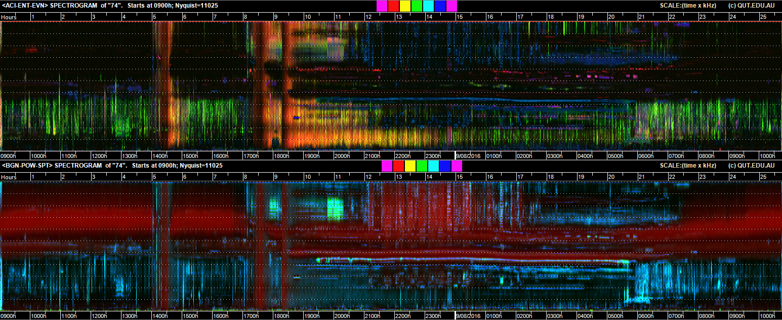 Soundscape of forest in East Kalimantan in Indonesian Borneo. Image courtesy of Queensland University of Technology.