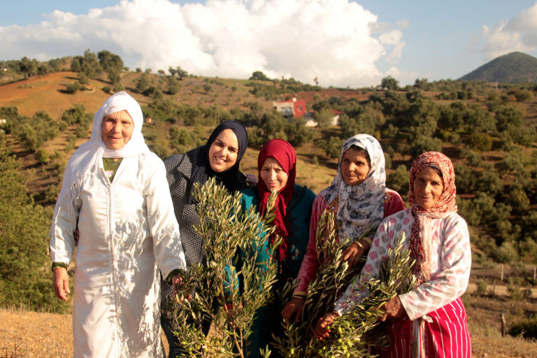Agroforestry empowers Morocco's mountain women