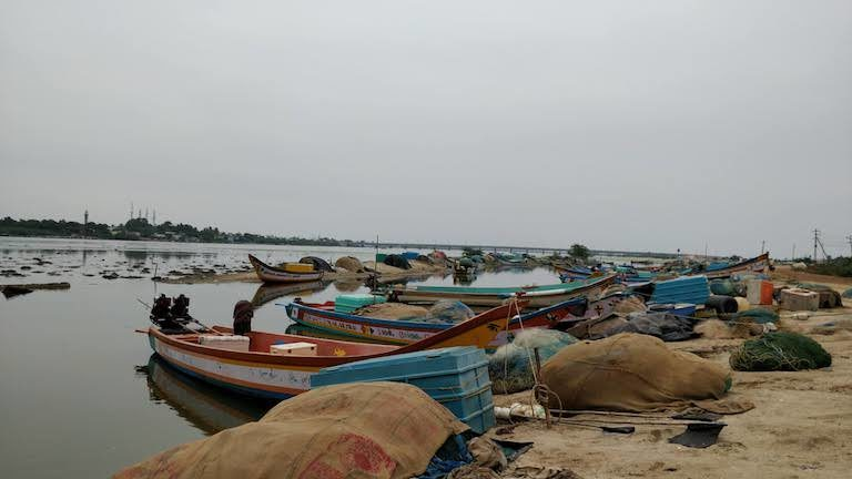 Fishermen park their boats on the bank of the Kosasthalaiyar River just before it enters the Bay of Bengal near Chennai. Photo credit: Mahima Jain
