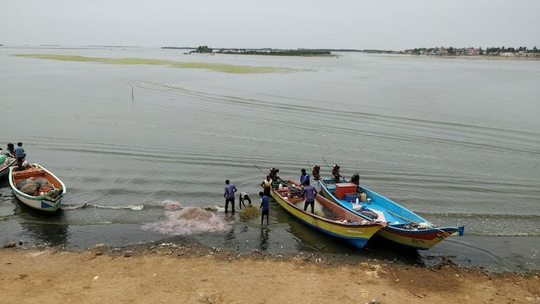 Fishermen wash nets at a beach near Chennai. By mapping beaches and other spaces traditionally used by fishing communities, Saravanan is attempting to conserve them. Image by Mahima Jain.