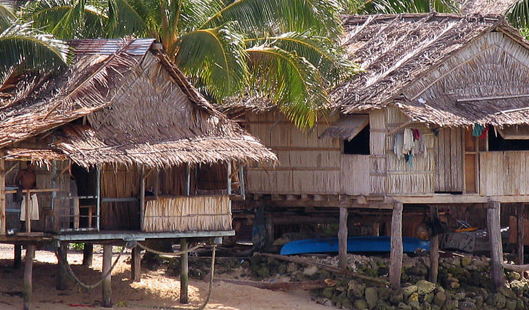 Solomon Islands Province Bans Logging In Bid To Protect