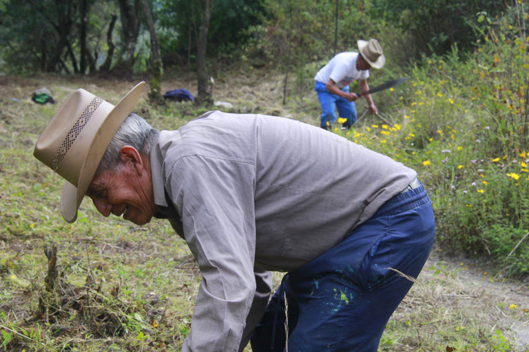 Francisco Escalante (foreground) and Óscar López have been community park rangers in Concepción Chiquirichapa since the mid 1970's. Image by Jorge Rodríguez for Mongabay.