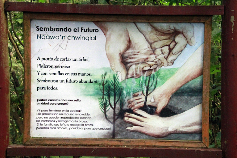 An educational sign in Kum Kum Wutz park encourages people to plant trees, especially if they harvest firewood from the forest. Image by Jorge Rodríguez for Mongabay.