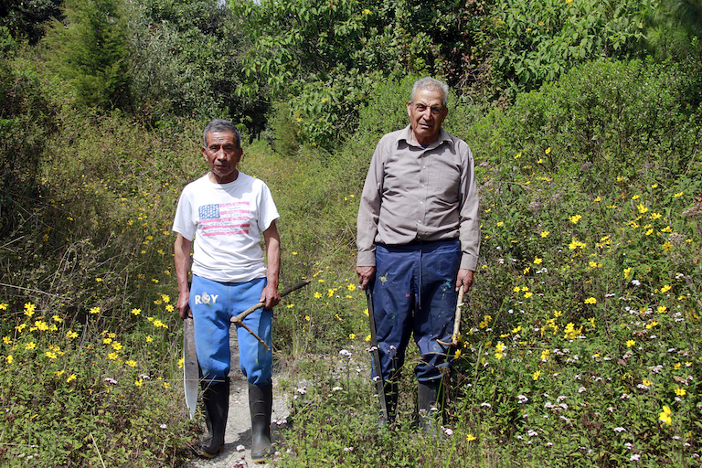 Óscar López (left) and Francisco Escalante have guarded and maintained the forest of Concepción Chiquirichapa since the mid 1970's. For decades they did so without pay, but are now employees of the town's Department of Protected Areas. Image by Jorge Rodríguez for Mongabay.