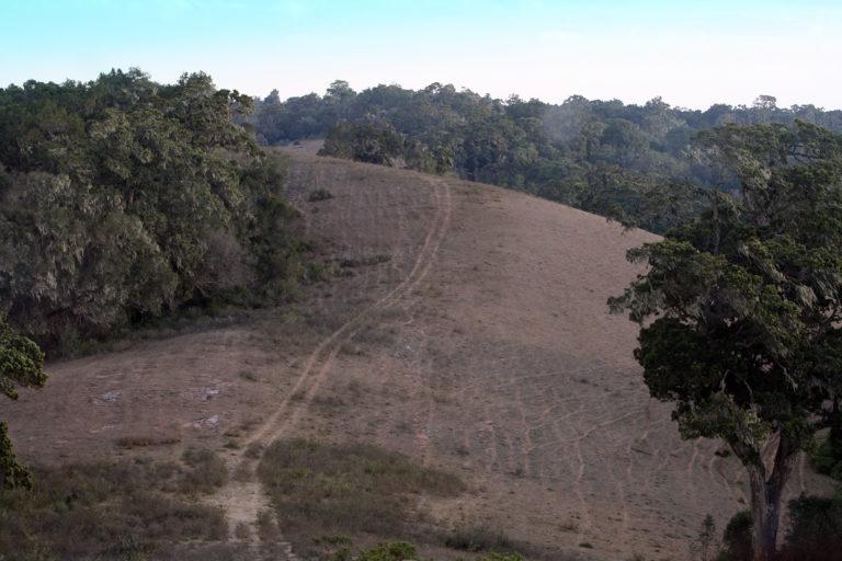 Car track in the Loita hills