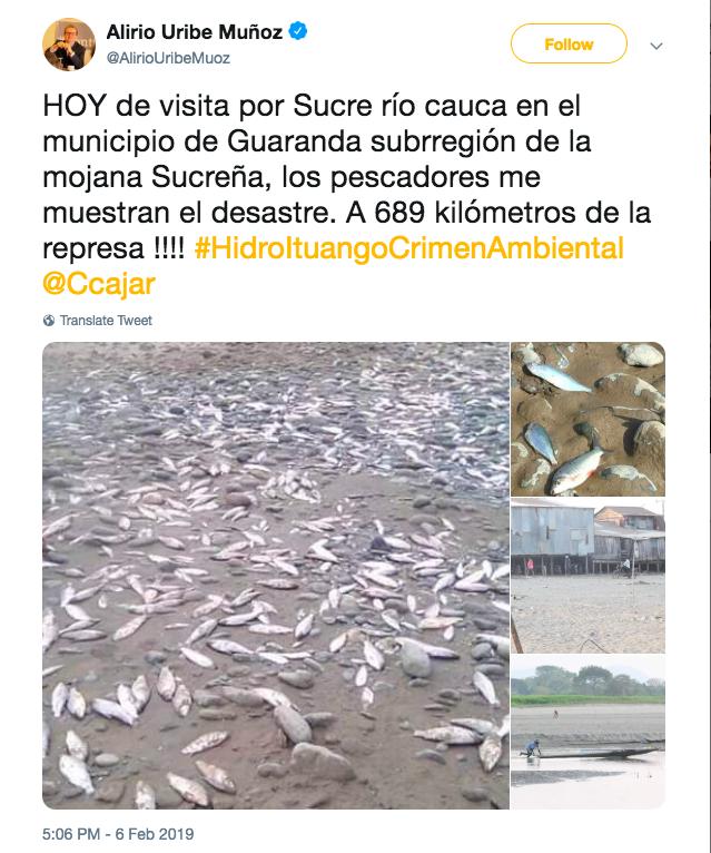 Environmental destruction at the Cauca River. Images via: https://twitter.com/AlirioUribeMuoz/status/1093315128987144193